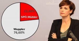 Rendi-Wagner spricht Wählern das Misstrauen aus