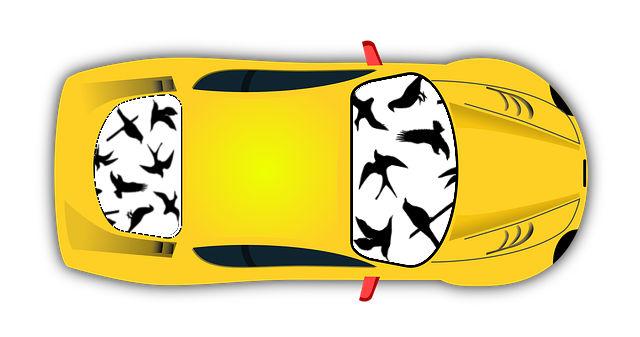 Auto mit aufgeklebten Vogelsilhouetten