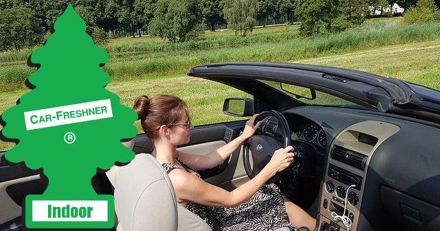 Cabriot-Fahrerin mit Wunderbaum