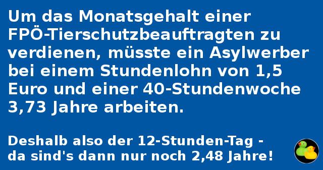 9500 Euro für FPÖ-Tierschutzbeauftragte