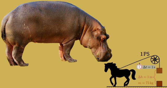 Nilpferdestärke ersetzt veraltete Pferdestärke