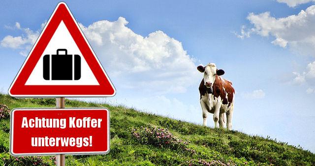 Warnschilder sollen Kühe auf Gefahr durch immer mehr Koffer hinweisen