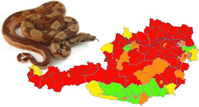 Schlangen-Inzidenz: Expertenkommission warnt vor exponentiellem Anstieg